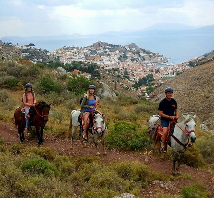 As Wild As – An experience with Harriets Hydra Horses